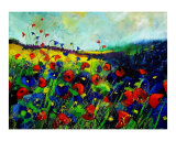 Red and Blue Poppies Giclee Print by Pol Ledent