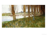 The Amber Vale, a Host of Golden Daffodils Giclee Print by John George Sowerby