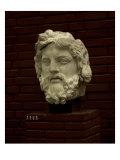 Zeus Giclee Print