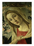 The Virgin and Child Surrounded by Angels Lámina giclée por Sandro Botticelli
