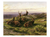 Stags at Rest Giclee Print by Rosa Bonheur