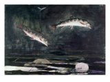 Leaping Trout Giclee Print by Winslow Homer