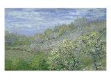 Arbres En Fleurs Giclee Print by Claude Monet