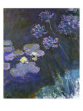 Water Lilies and Agapanthus Lámina giclée por Claude Monet