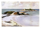 Gallows Island Giclee Print by Winslow Homer