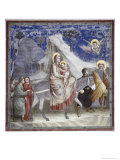 Flight into Egypt Giclee Print by  Giotto di Bondone