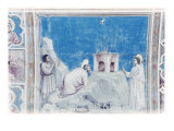 Sacrifice of Joachim Giclee Print by  Giotto di Bondone