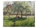 An Enclosure in Eragny Reproduction procédé giclée par Camille Pissarro