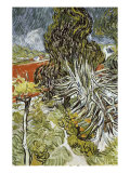 Dr. Paul Gachet's Garden at Auvers-Sur-Oise, c.1890 Giclee Print by Vincent van Gogh