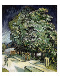 Chestnut Trees in Blossom Giclee Print by Vincent van Gogh