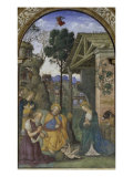 The Nativity Giclee Print by Bernardino di Betto Pinturicchio
