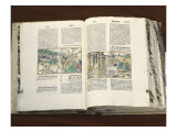 German Bible: Story of Moses Giclee Print