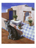 Cat of Morocco (Chat Du Maroc) Giclee Print by Isy Ochoa