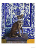 Cat of Portugal (Chat Du Portugal) Giclee Print by Isy Ochoa