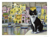 Cat in Corricella, Italy Reproduction procédé giclée par Isy Ochoa