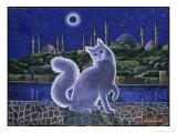 Angora Cat, Istanbul Giclee Print by Isy Ochoa