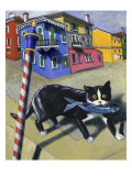 Cat of Burano (Chat de Burano) Giclee Print by Isy Ochoa