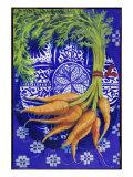 Carrots (Carottes) Giclee Print by Isy Ochoa