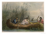Gathering Wild Rice Giclee Print by Seth Eastman