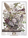 August Giclee Print by H. Fletcher