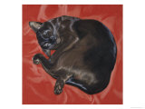 Velvet Cat I (Chat Velours I) Giclee Print by Isy Ochoa