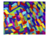 Abstractions Giclee Print by Diana Ong