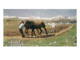 Plowing in the Engadin Giclee Print by Giovanni Segantini
