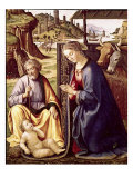 The Birth of Christ Giclee Print by Sebastiano Mainardi