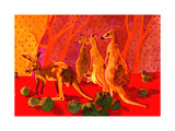 Roo Herd Giclée-tryk af John Newcomb