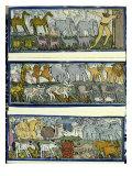 Arka Noego Wydruk giclee autor Leslie Xuereb