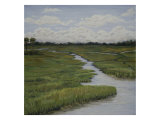 Marshes II Giclee Print by Diantha York-ripley