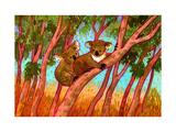 Koalas Giclee Print by John Newcomb