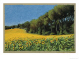 Sunflowers in Perugia Giclee Print by Helen J. Vaughn