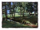 Helen J. Vaughn - Shady Spot at the Botanical Gardens Digitálně vytištěná reprodukce