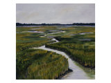 Marshes I Giclee Print by Diantha York-ripley