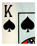 Royal Flush of Spades IV Giclee Print by Teo Alfonso