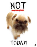 Not Today! Prints by Yoneo Morita
