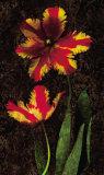 Decorative Tulips II Posters by John Seba