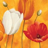 Festa di Tulipani (detail) Poster by Maria Grazia Luffarelli