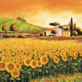 Valley of Sunflowers (detail) Poster par Richard Leblanc