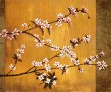 Kirsebærtræer i flor Plakater af Erin Lange