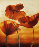Poppies in Sunlight II Print by Andrea Kahn