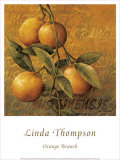 Orange Branch Prints by Linda Thompson