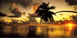 Aitutaki Lagoon, Cook Islands Plakater af Peter Hendrie