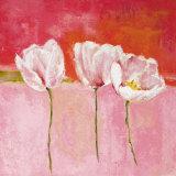Fleurs En Rose II Imágenes por Isabelle Herbert