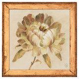 Peony Floret Prints by Lauren Hamilton