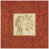 Agapanthus Floret Posters by Lauren Hamilton