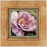 Picture Perfect Peony Prints by Chad Barrett