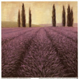 Lavender Horizon Detail Print by James Wiens