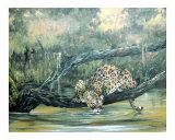 Watering Hole Giclee Print by Evelyn L Peterson